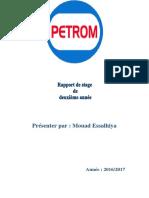 Rapport Petrom Mouad