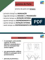 Mecanismo Parto - Slide