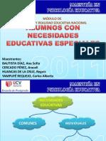Ne esidades Educativas Especiales.pdf