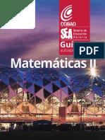 Guia MatematicasII SEA