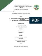 314915905 Clasificacion Estructura y Replicacion de Las Bacterias