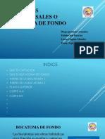 Sumideros transversales o bocatoma de fondo (2).pptx