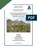 Perfil agua Marripon.pdf