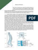 Anestesi Spinal