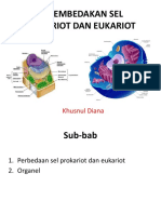 4. Membedakan Sel Prokariot Dan Eukariot