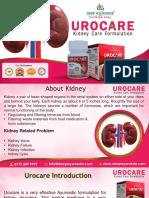Ayurvedic Treatment for Kidney Disease