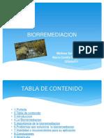 Biorremediacion_34_35