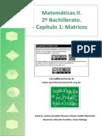 BC2 01 Matrices