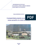 TESE_VILMA_APARECIDA_SILVA.pdf