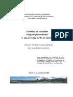 Jorge_tese.pdf