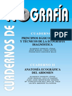 PRINCIPIOS BASICOS (1)