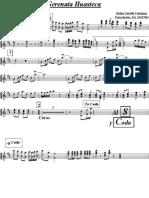 srenata-huasteca-vs.pdf