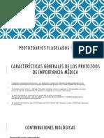 PROTOZOARIOS FLAGELADOS