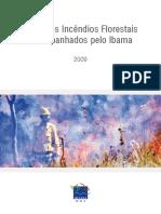 Prevfogo Incendios Florestais Perfil Dos Incendios 2009