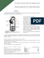 Capitulo 14 - Panorámica de La Circulación, Física Médica de La Presión, El Flujo y La Resistencia