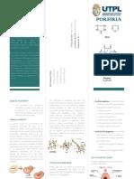 TRIPTICO-PORFIRIA.pdf