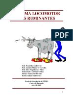 Sistema Locomotor Dos Ruminantes