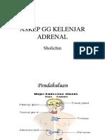 6 Gg Kel Adrenal