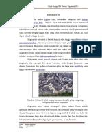 Hukum Geologi