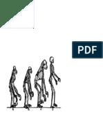 evolucion del hombre.docx