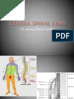 Spinal Cord Injury 180514
