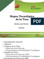 Mapeo_tecnologico_tara_2012_keyword_principal.pdf