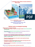 5.NutrientWaterCN Cycles