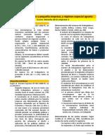 Lectura - Régimen de La Micro y Pequeña Empresa (2)