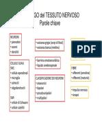 Midollo Spinale e Nervi Spinali 2013-14 -Modalita Compatibilita