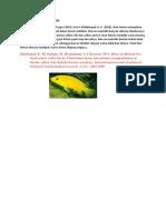 Morfologi ikan Lemon