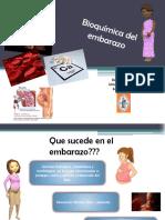 74151641-Bioquimica-del-embarazo.pptx