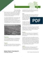 Gardening) Tree Planting - Planning
