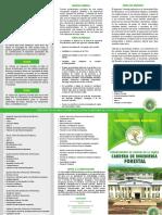 tripticoforestal.pdf