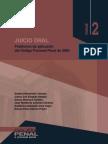 JUICIO ORAL  problemas de aplicacion del NCPP 2004.pdf
