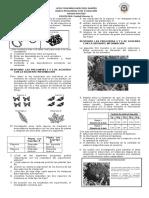 Banco-Icfes-Evolucion.doc