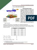 Simulacro 2. Con respuestas.pdf