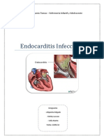 PAE Endocarditis