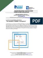 3. Programación Educativa y Adaptaciones Curriculares Individuales (2)