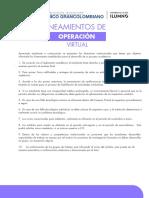 Lineamientos Operacion Virtual