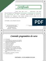 certificado cipa 2010