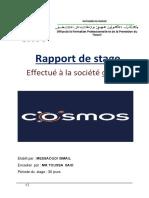 Rapport de Stage Effectué à La Société Cosmos