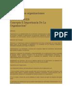 Estudio de Las Organizaciones EXP