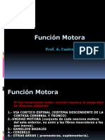 Tema 52 Patologc3ada General Del Cerebelo Ataxia y Vc3a9rtigo
