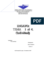 Ensayo Temas 1,2,3,4 Individual
