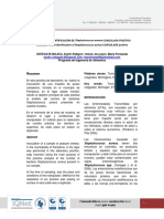 Informe 2 Staphylococcus