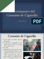 EXPO1 DETRMINANTES DEL CONSUMO DEL CIGARRILLO