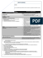 Informe Descripción de Pei