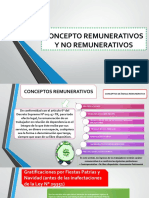 Conceptos Remunertivos y No Remunertivos