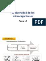 18microorganismos-110413171622-phpapp01