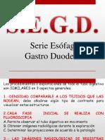 S.E.G.D 2017